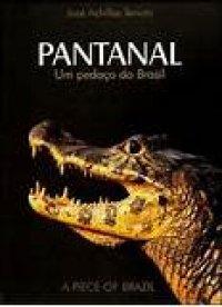 Pantanal um pedaço do Brasil